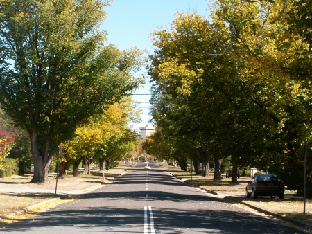 Canberra in Autumn #11