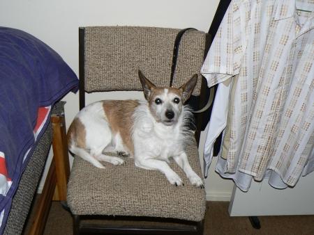Nattie in 2007