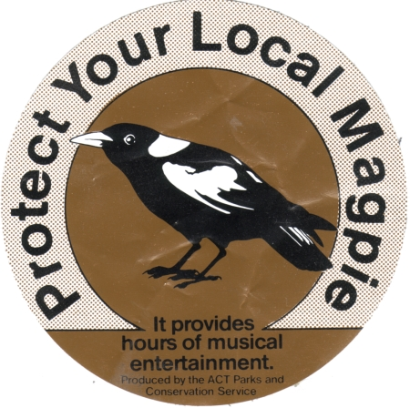 Protect your local magpie