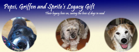 Mark Levin's dogs Pepsi, Griffen and Sprite