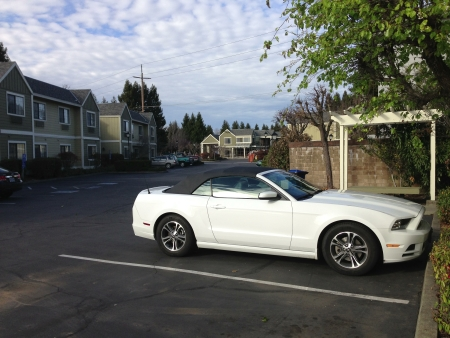 My Mustang parked at the Quality Inn, Petaluma