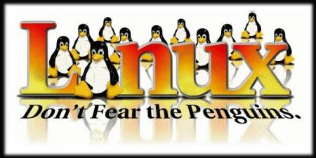 Don\'t Fear The Penguins