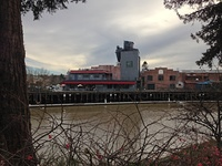 Downtown Petaluma as seen from the river
