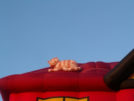 The Cat on the roof of the Liberty Financial Balloon at the 2006 Canberra Balloon Fiesta