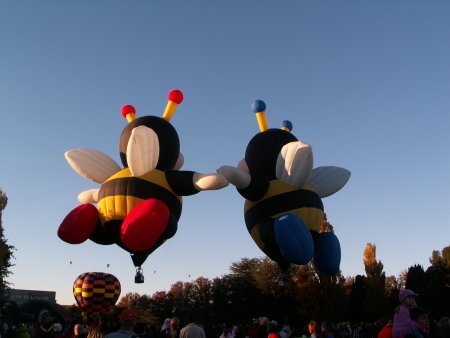 The bumble bee balloons at the 2006 Canberra Balloon Fiesta
