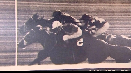 1973 Black Opal Photo Finish