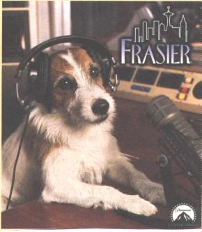 Moose in Frasier's studio