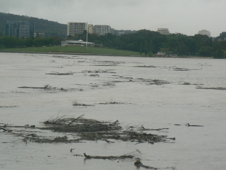 Queanbeyan Flood: Lake Burley Griffin takes the debris
