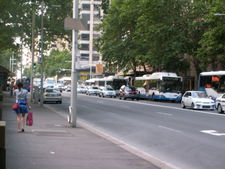 Buses on Elizabeth Street